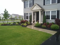 Lancaster Red Clover new construction landscaping